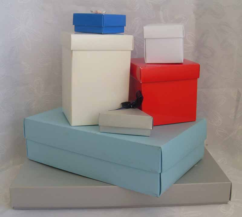 Gift Boxes And Bags The Fiddly Farty Company Ltd